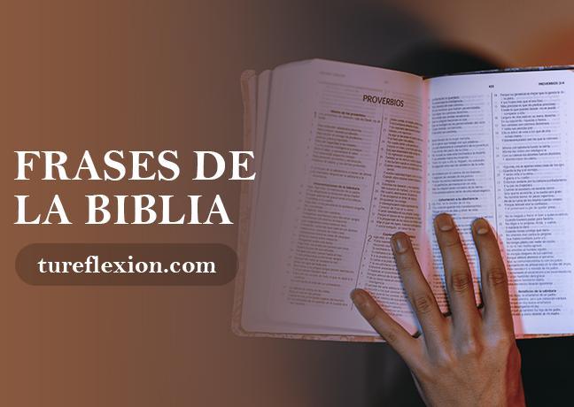 Frases De La Santa Biblia Y Citas Bíblicas Tu Reflexión