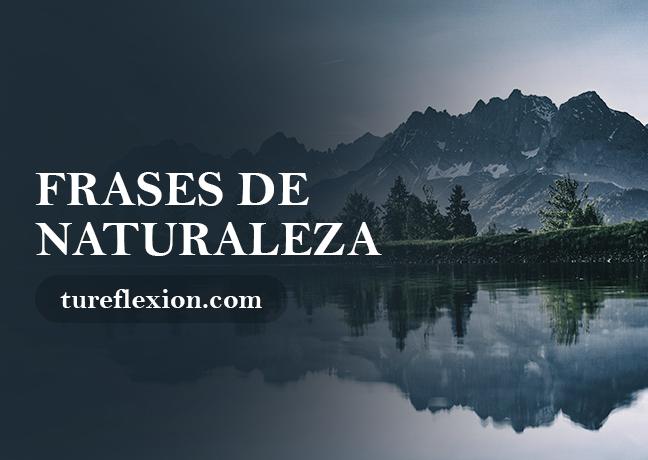 Frases De Naturaleza Y Medio Ambiente Tu Reflexión