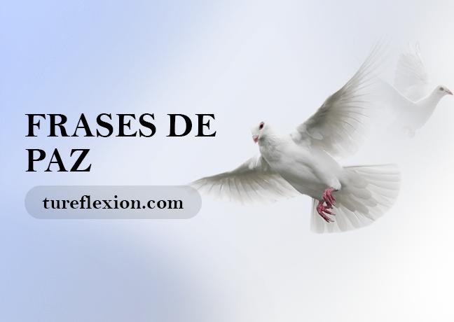 Frases De Paz Interior Mundial Armonía Tranquilidad