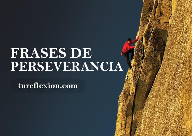 Frases De Perseverancia Y El Valor De Persistir Tu Reflexión