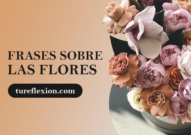 Frases De Flores Tu Reflexión
